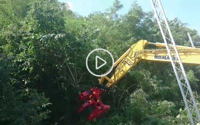 Pinza forestale: deforestazione con escavatore Komatsu