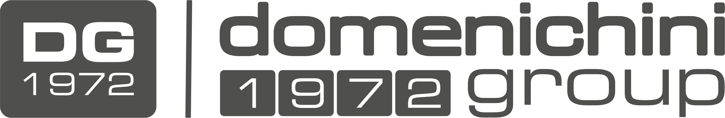 domenichinigroup